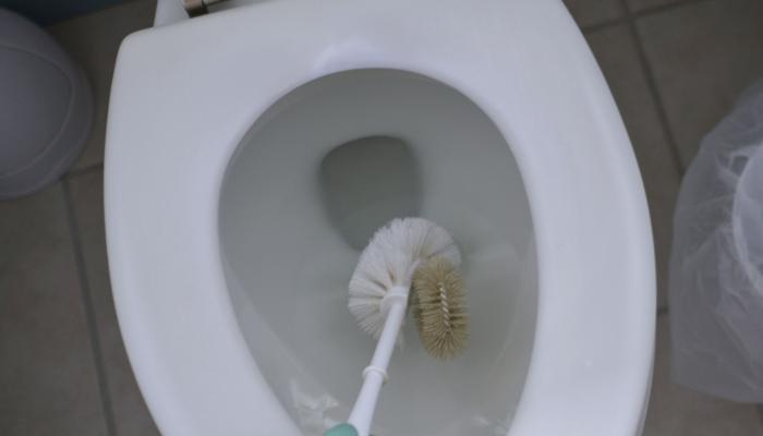 ciscenje dna wc skoljke